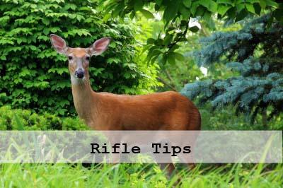 Rifle Tips for Deer Season